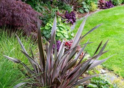 Back garden in Court Lane, Dulwich, 4