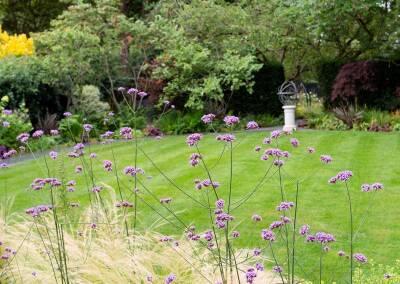 Back garden in Court Lane, Dulwich, 3