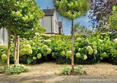 Front garden design, Burbage Road, Dulwich, 2