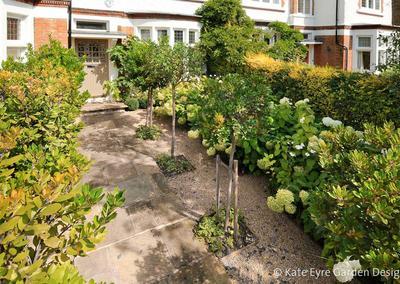Front garden design, Burbage Road, Dulwich, 3