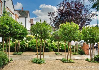 Front garden design, Burbage Road, Dulwich, 4