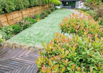 Back garden design, Alleyn Rd, 2