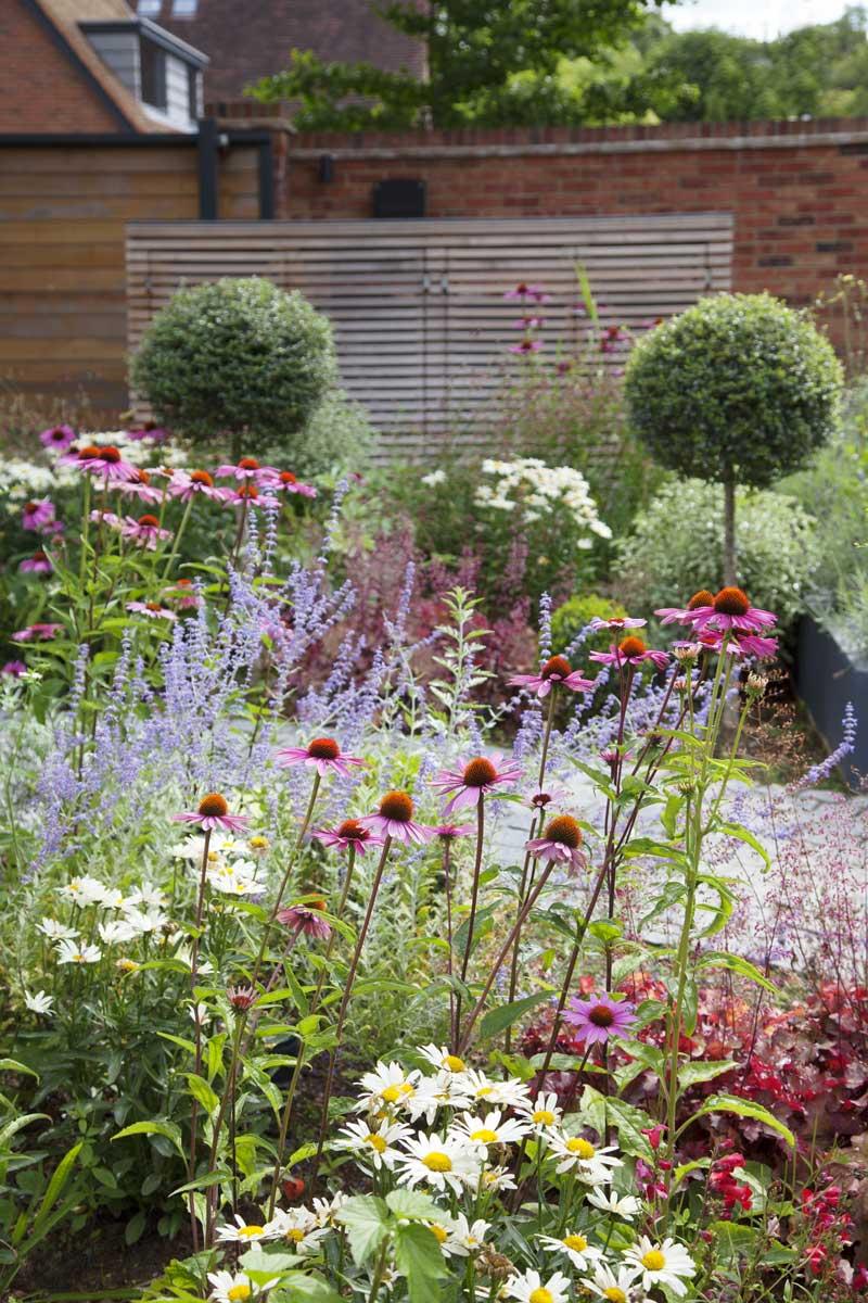 Wrap-around garden design in Allison Grove, Dulwich, 3