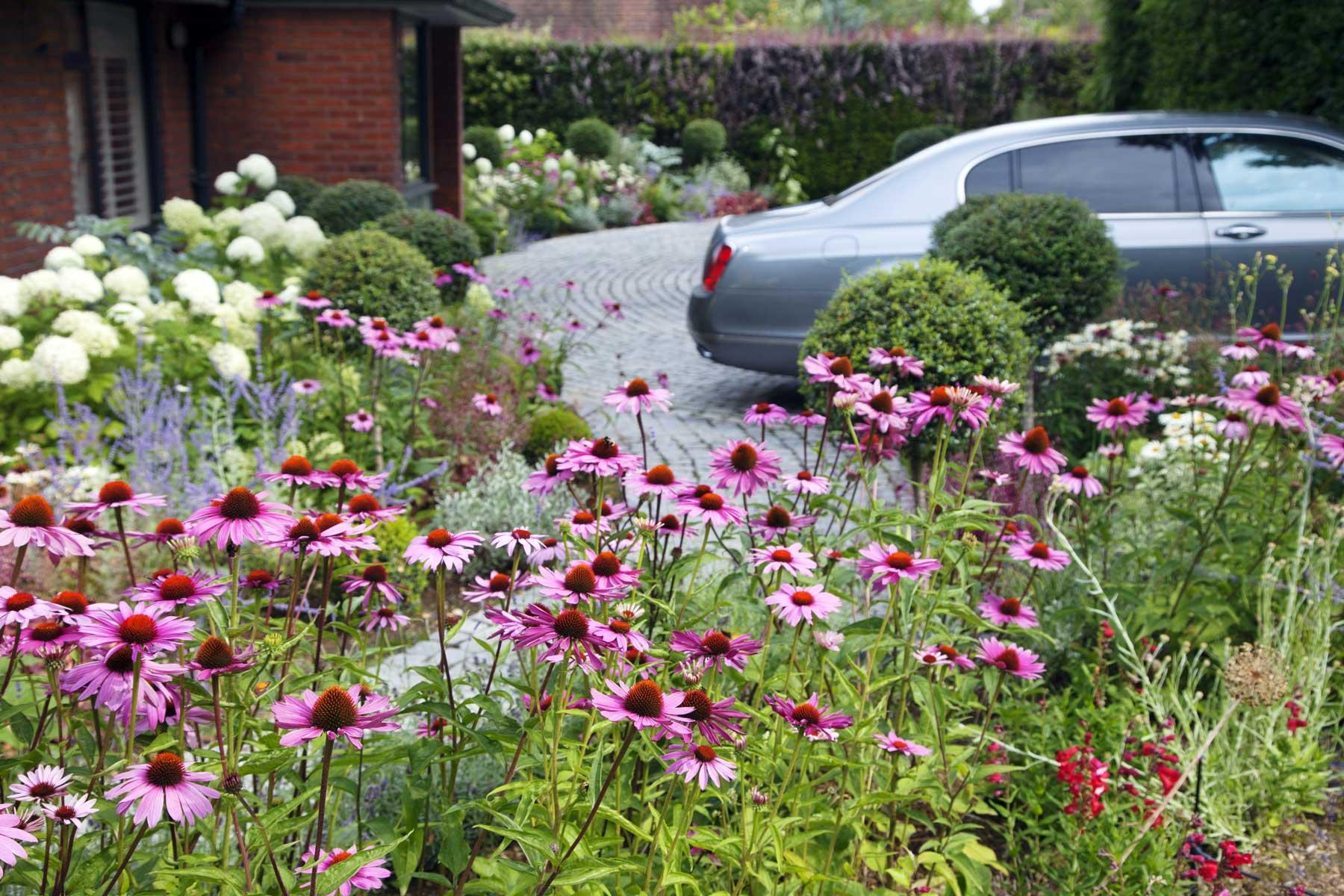 Wrap-around garden design in Allison Grove, Dulwich, 8