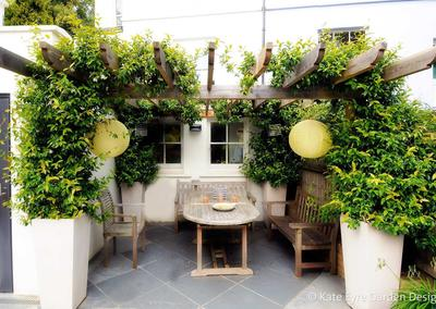 Large back garden design in Crystal Palace, South London, 1 - pergola