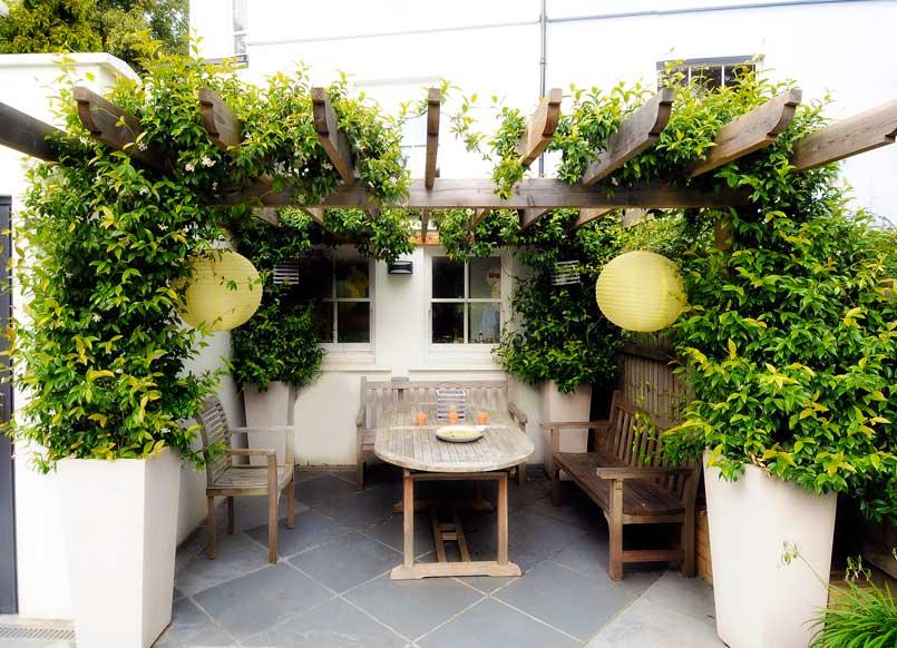 Back garden design, Belvedere Road, Crystal Palace