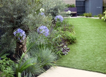 Medium back garden design in Druce Road, Dulwich, 9
