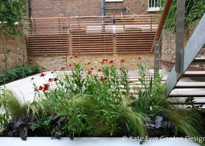 Small garden design in Argyll Rd, Kensington, 5