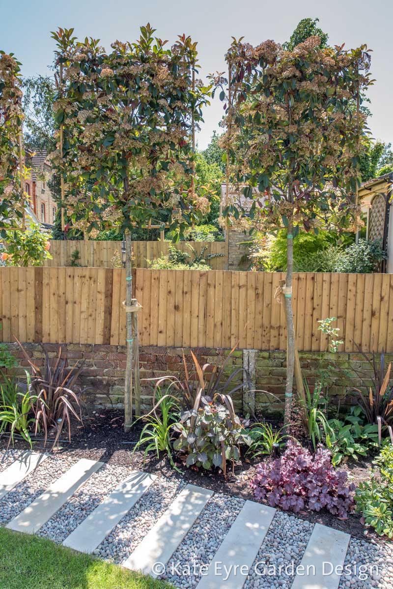 Kate Eyre Garden Design: Wandsworth SW18