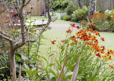 Back Garden 2, Turney Rd, 7
