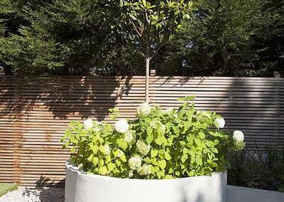Garden design in Alleyn Park, Dulwich, 12