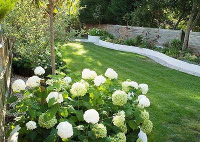 Medium back garden design in Alleyn Park, Dulwich, 9