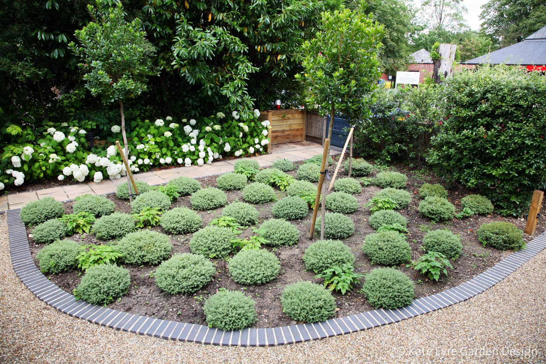 Front garden design in Dulwich Village, 5
