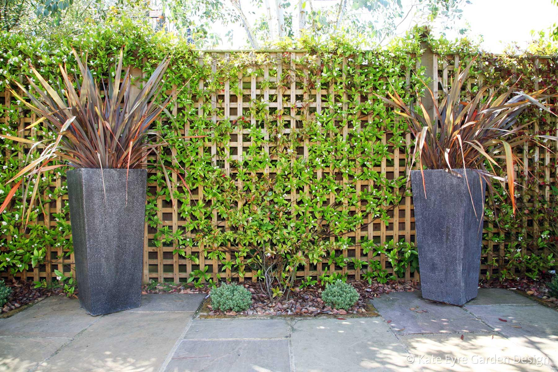 Back garden design in Dulwich Village, 9