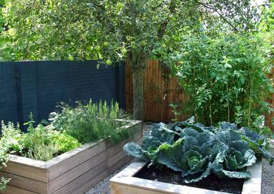 Back garden design in Dulwich Village, 5