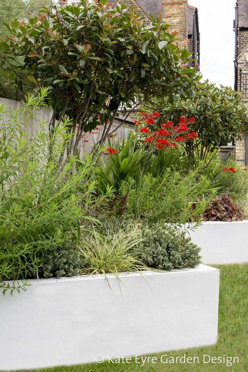 Back garden 2, Calton Ave, 7