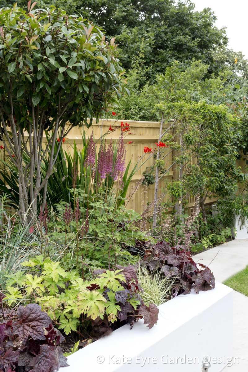 Back garden 2, Calton Ave, 8