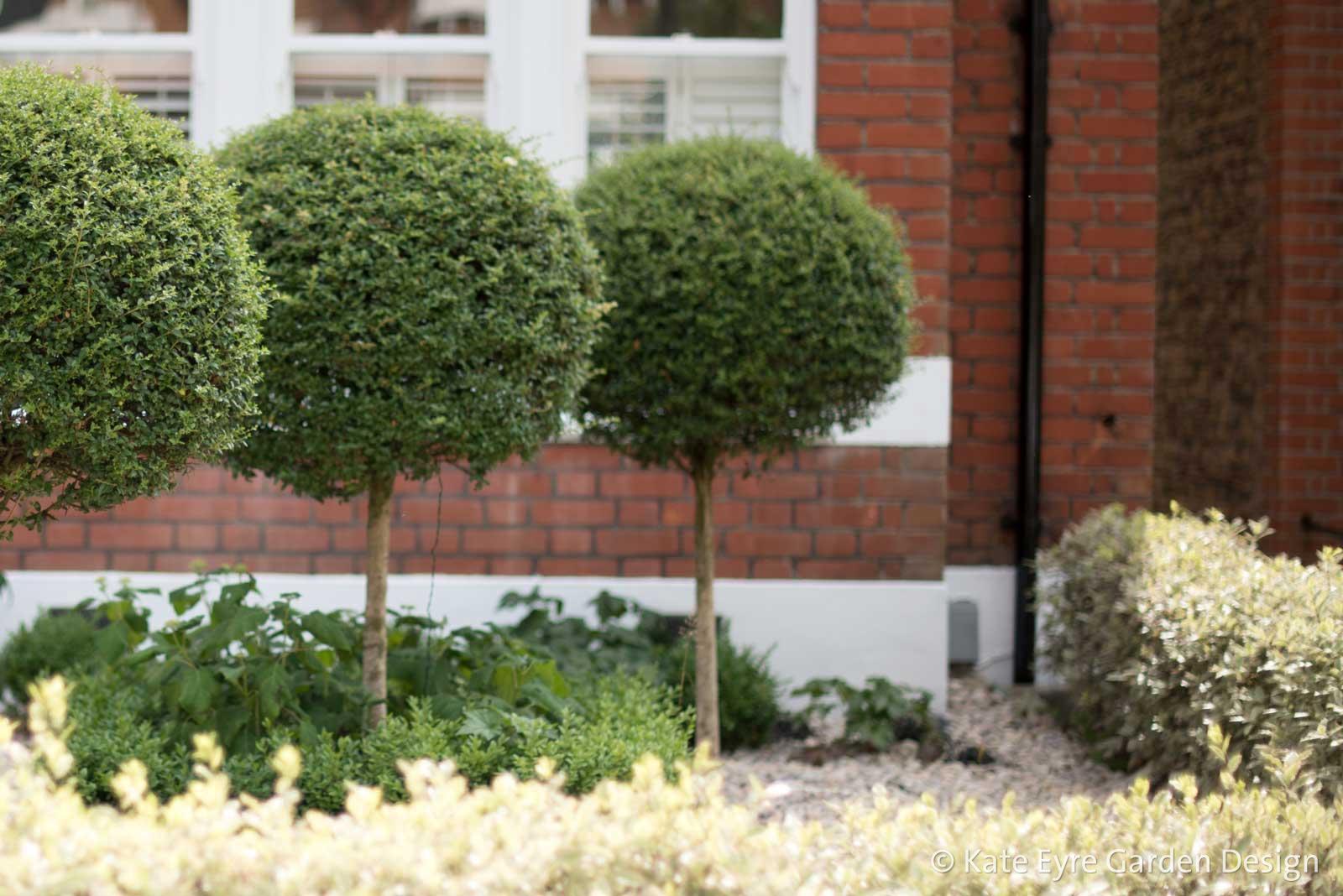 Front garden design, Woodwarde Road, London, 1