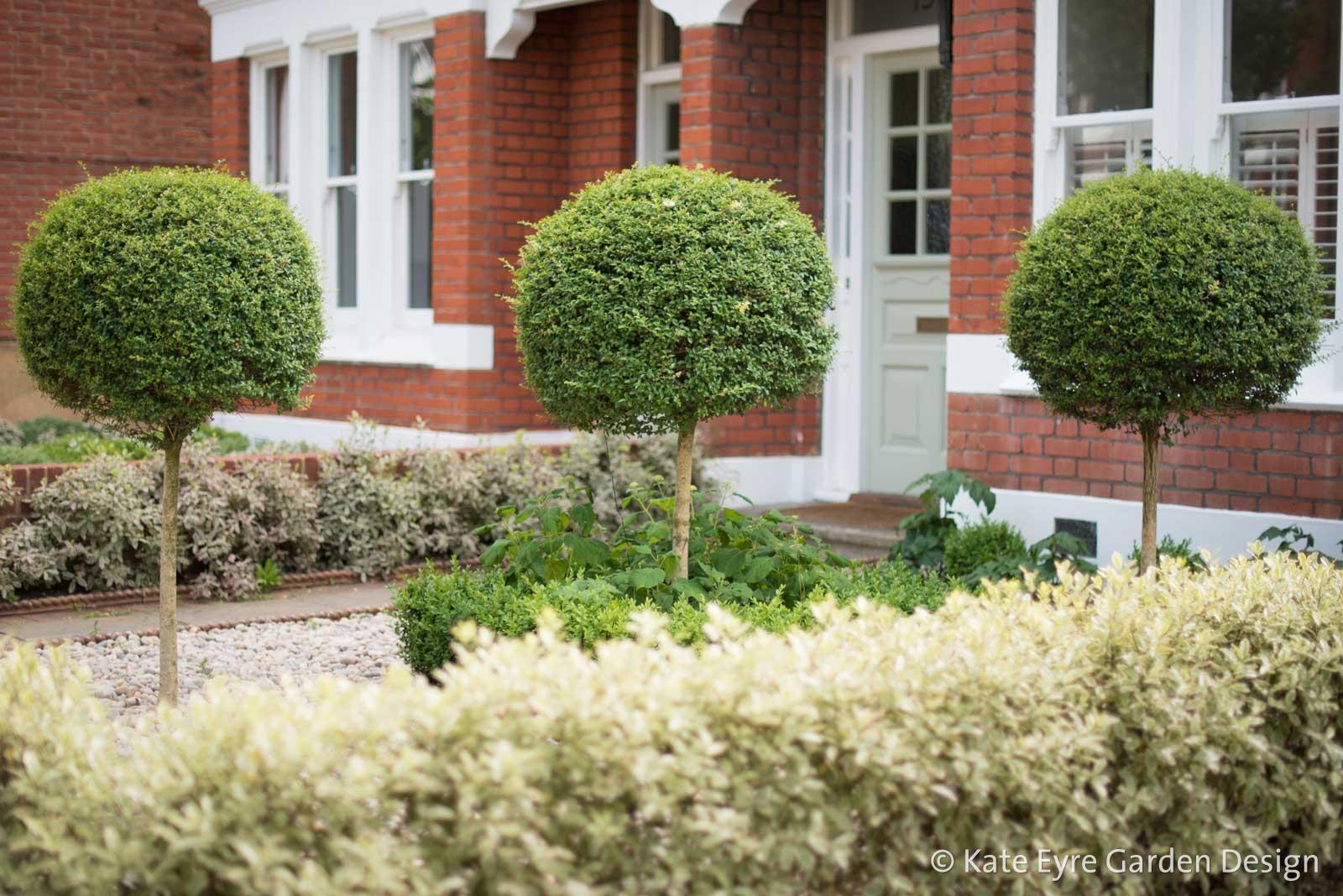 Front garden design, Woodwarde Road, London, 2