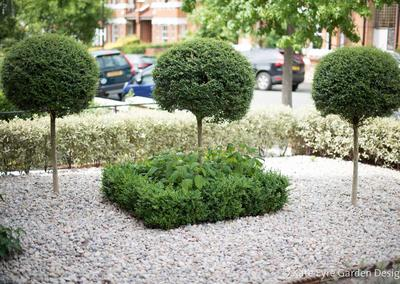 Front garden design, Woodwarde Road, London, 3