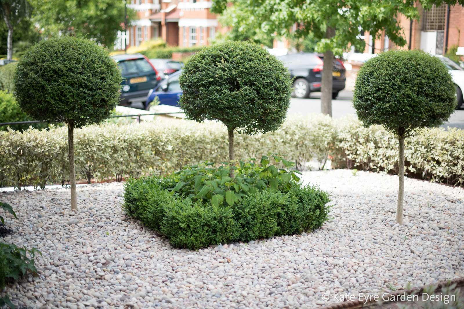 Front garden design, Woodwarde Road, London, 3