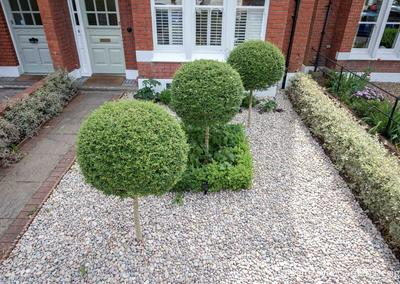 Front garden design, Woodwarde Road, London, 4