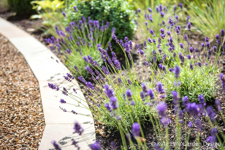 Front Garden Design, Alleyn Road, London, 6