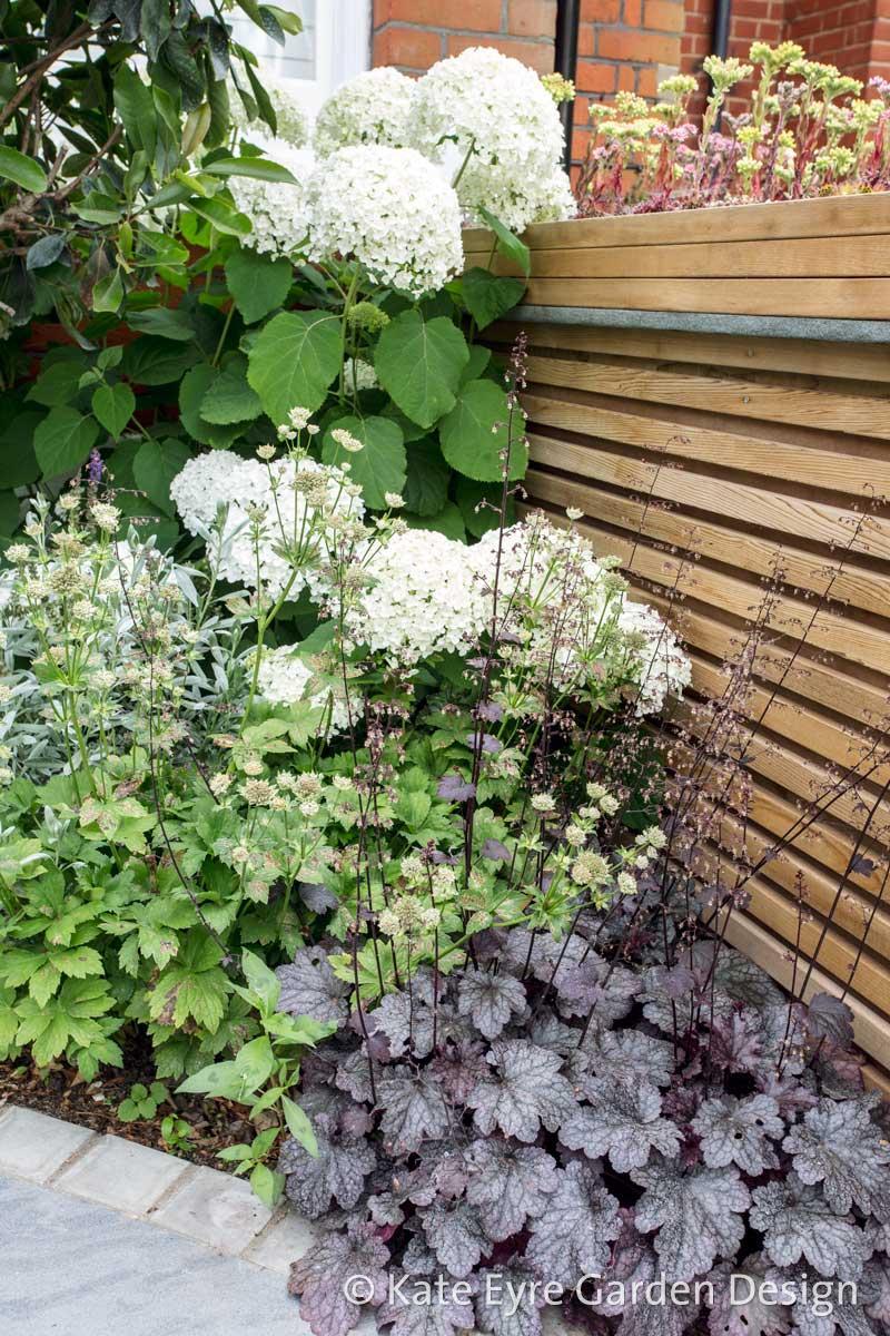 Front garden, Woodwarde Road, London, 4