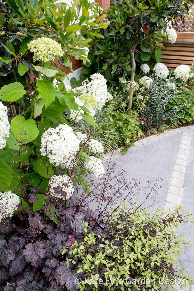 Front garden, Woodwarde Road, London, 7