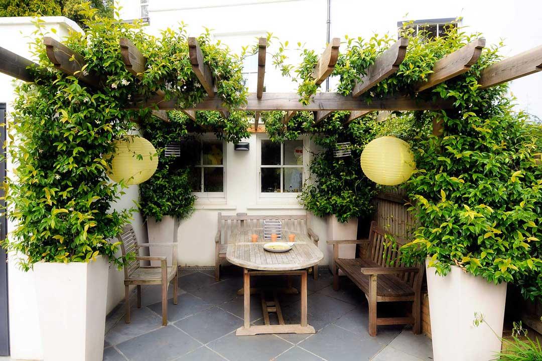 Bespoke Garden Pergola, London, 3